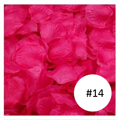 best selling rose colour petal singapore cheap