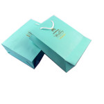 Green Wedding Print Paper Gift Bag Singapore
